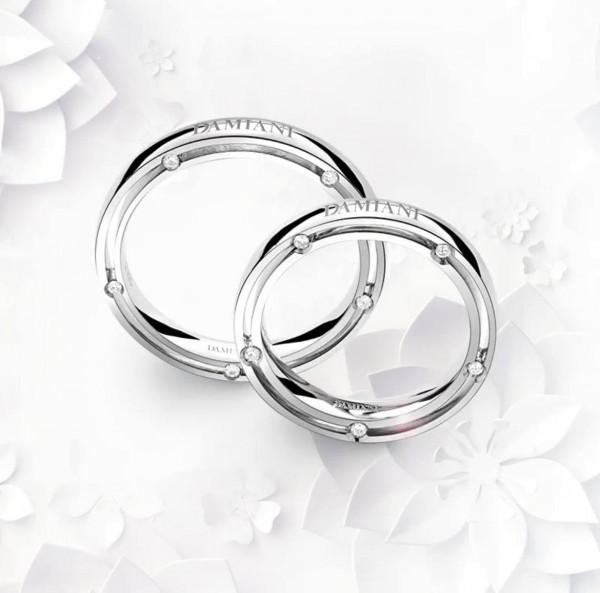 matrimoni damiani fedi